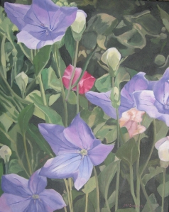 Bellflower Beauties, 2011