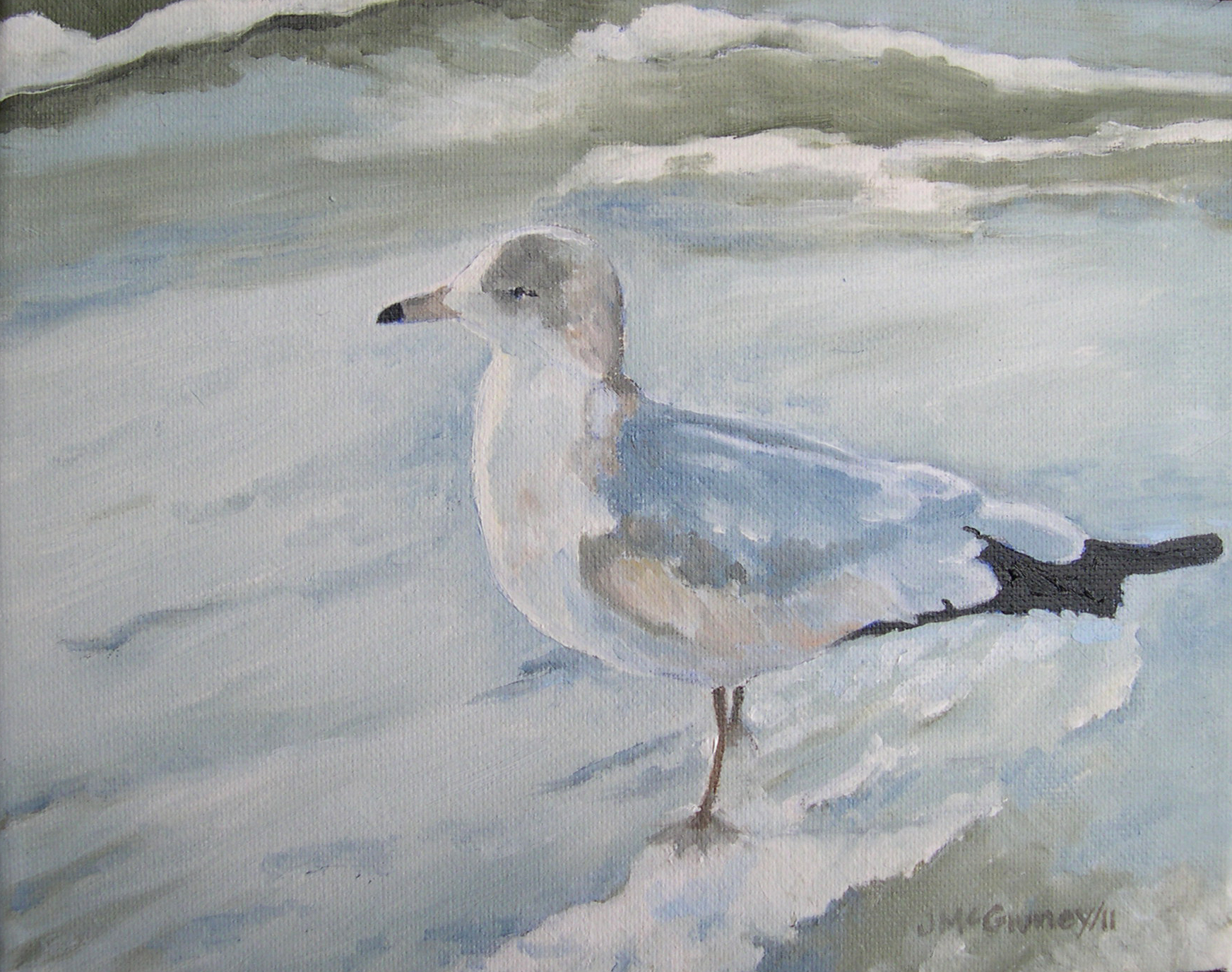 Sea Gull, Naples