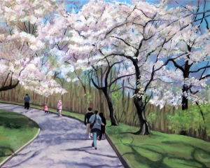 Cherry Blossoms #1, 2012, 20 x 16, Oil on canvas