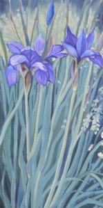 Blue Flag Irises 2013 10x20
