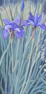 Blue Flag Irises 2013 10x20