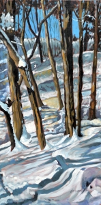 Snow Shadows 2013 15x30