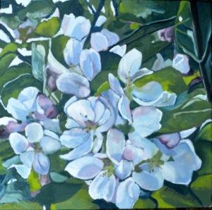 Cherry Blossoms, 2014, 12x12