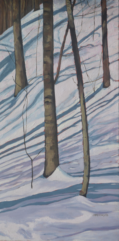 Snow Shadpws No 2 2015 b med