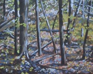 Autumn Woods  No 1 2015, 10 x 8