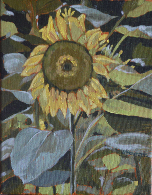 Sunflower 2015 a med