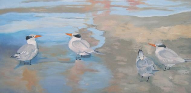 Terns on the Beach, Florida 2011 Best