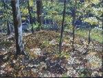 autumn-sherwood-11×14-2016