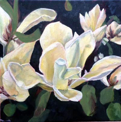 Yellow Magnolia 12x12 2017