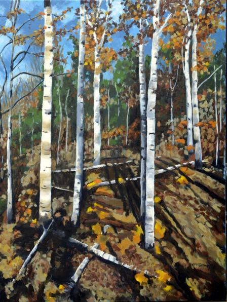 Algonquin Birch Trees modified ii