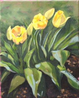 Yellow Tulips brighter ii