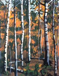 Birches Study 8 x 10