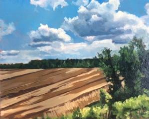 Golden Fields 8x10